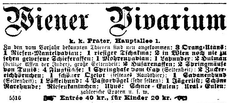 Vivarium in the Vienna Prater advertises the arrival of three new Orang-Utans in the Neue Freie Presse on 1 August 1892.